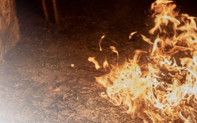 What To Do Immediately After a Commercial Fire