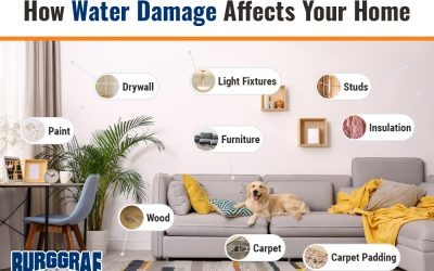 How Water Damage Affects Your Home