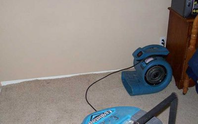 "Review: Carpet Restoration – ""So professional, so nice"""
