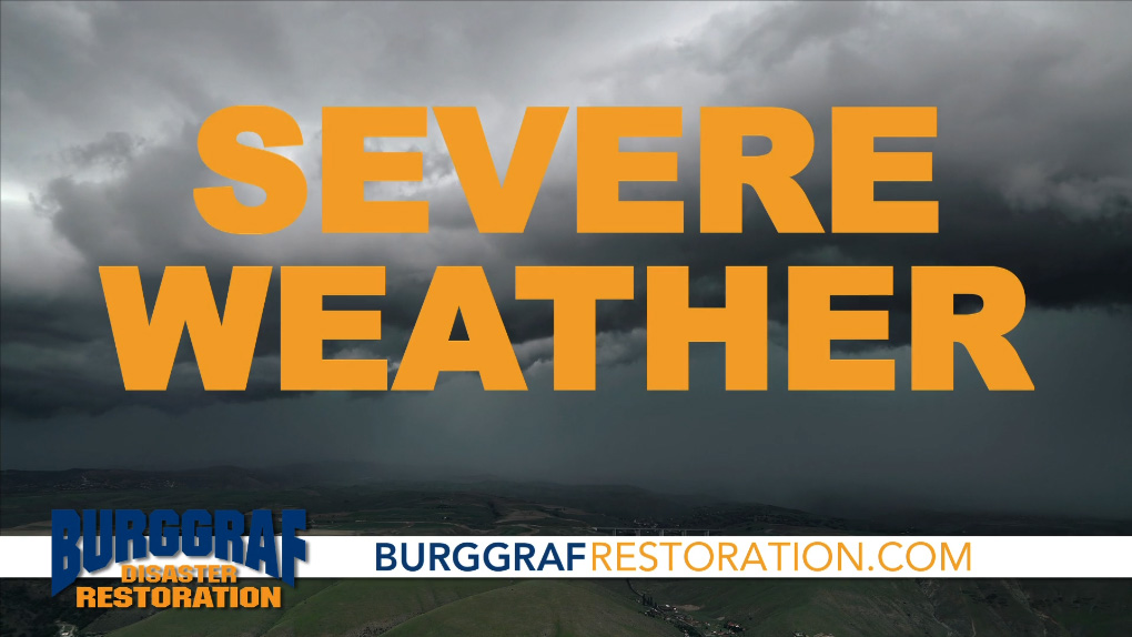 Burggraf Featured on Channel 6 News